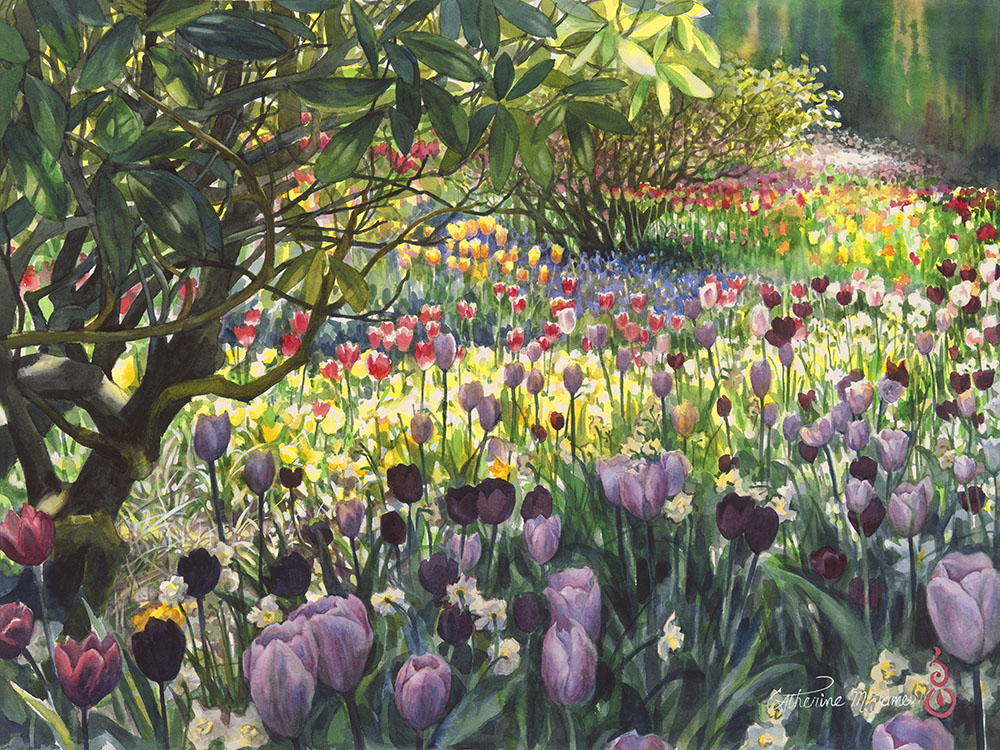 """Neverending Tulips"" by Catherine M James"