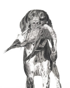 Artwork by Cole Johnson, Art Scanning, Pencil Drawing, Fine Art Giclee Prints
